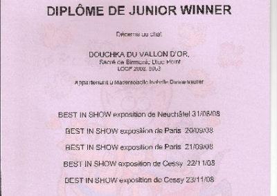 Diplôme du 1er Birman Français Junior Winner