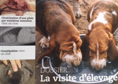 LE POINT VETERINAIRE en 2014