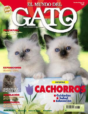 delhy Darius El Mundo del gato PTE WEB