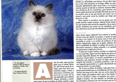El Mundo del Gato MAI 2009
